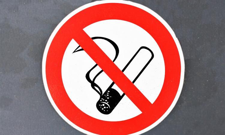 Курить нельзя а рекламировать можно como funciona google adwords youtube